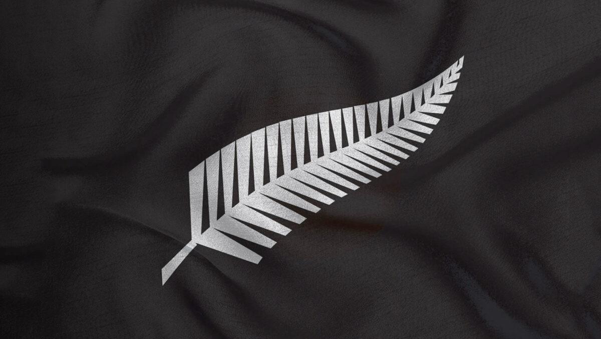 All Black Silver Fern Logo