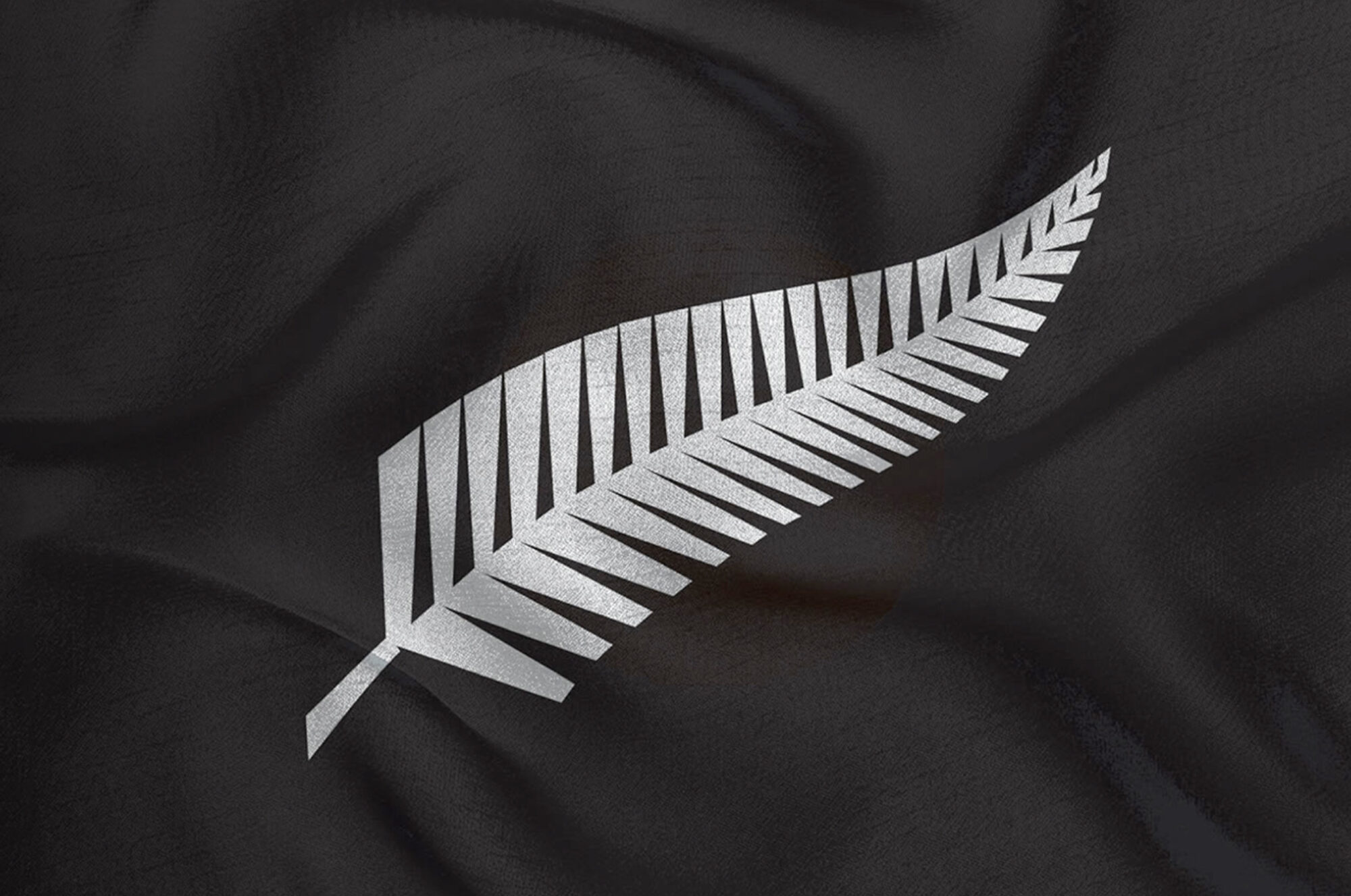 NZRFU Silverfern brandmark logo