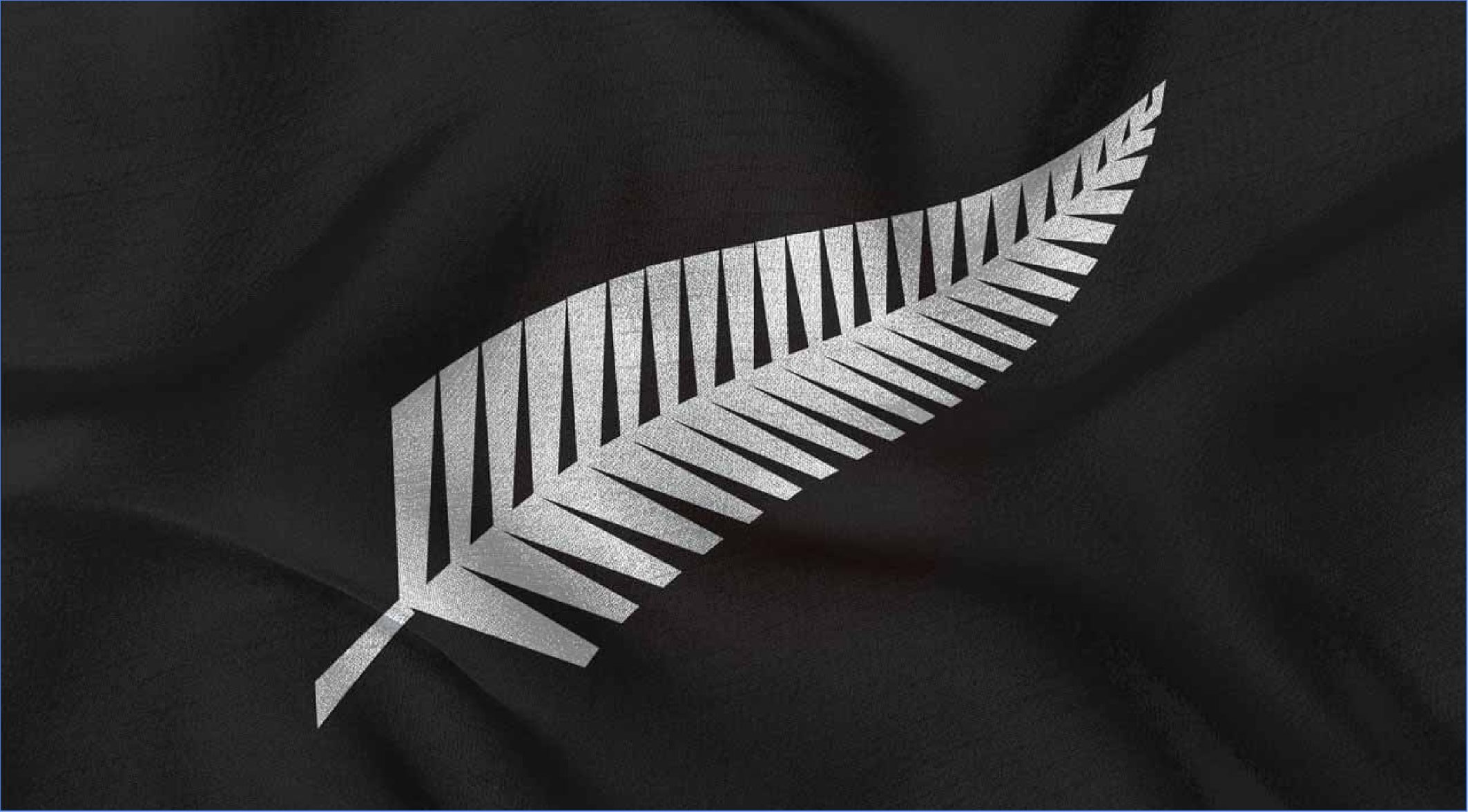 All Blacks Silverfern Brand Logo