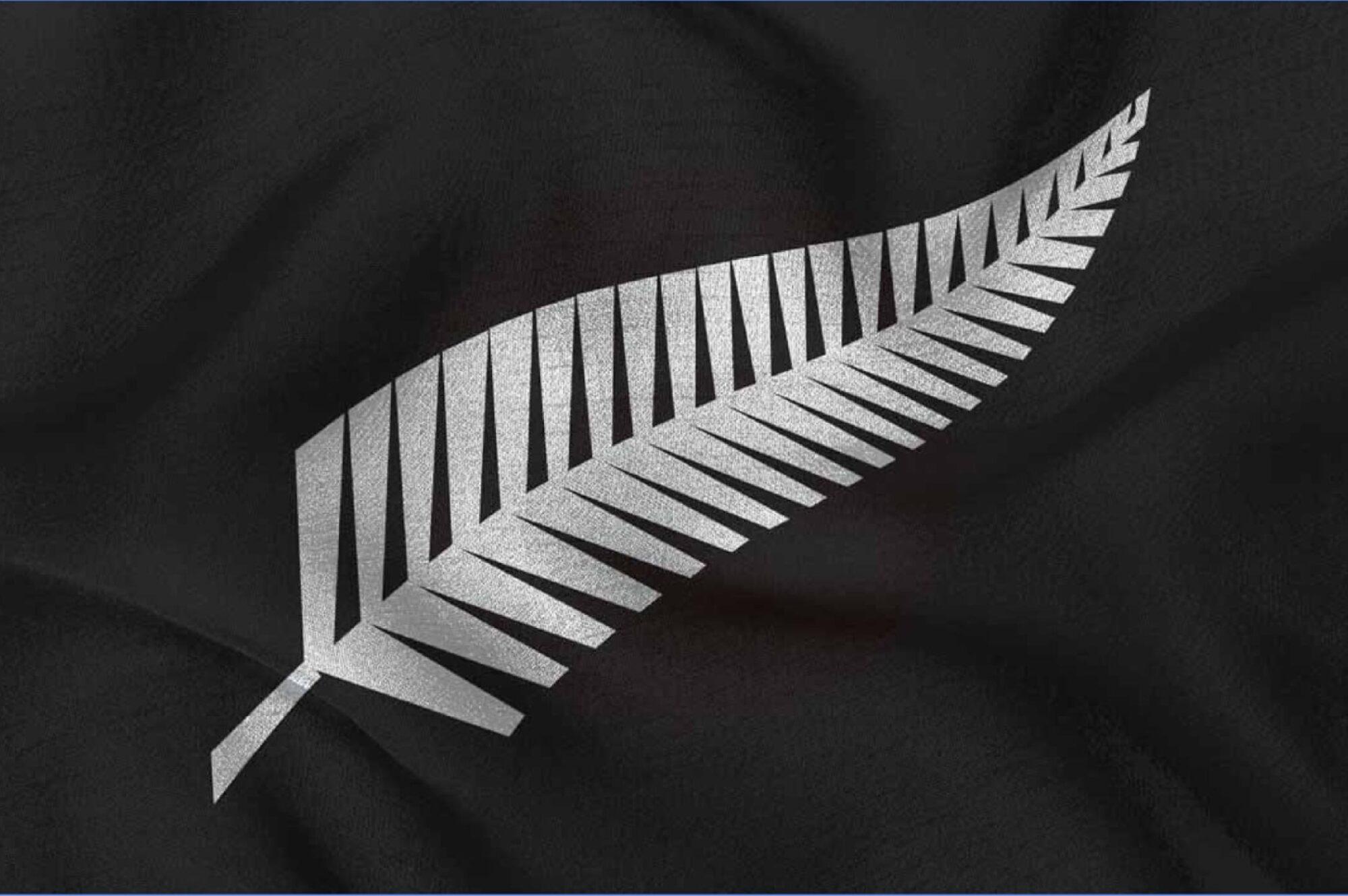 All Blacks Silverfern Brand Logo
