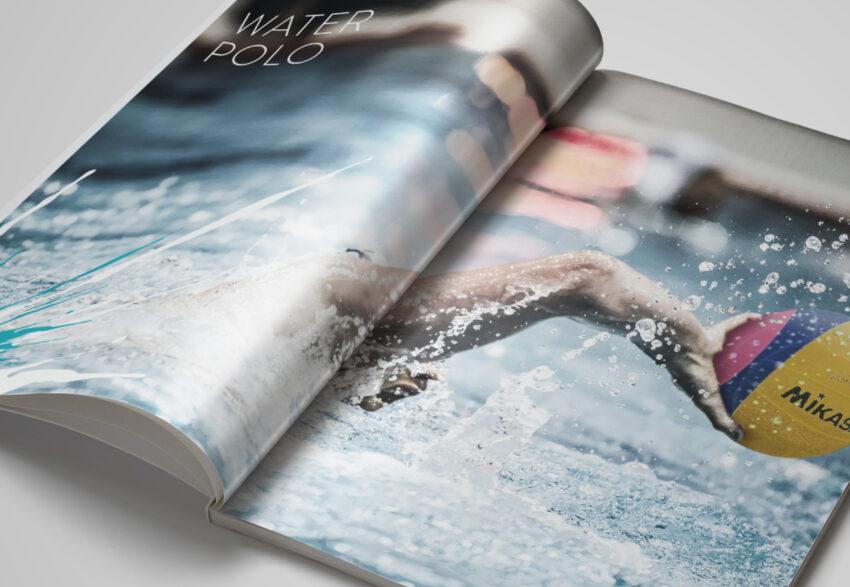 SSA publication spread