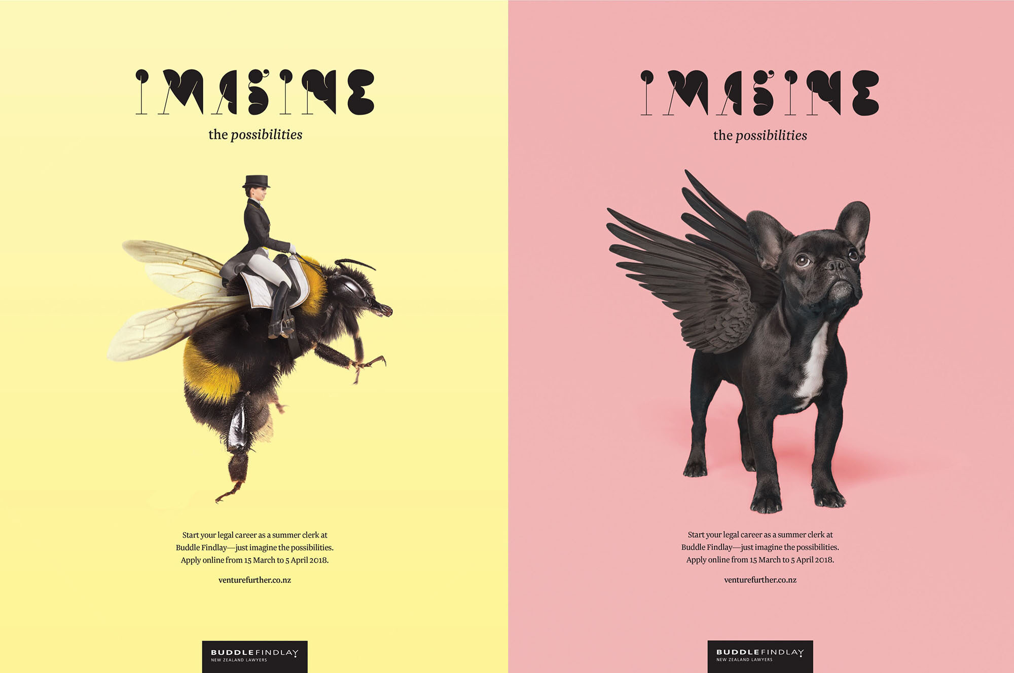 Buddle Findlay graphic design posters